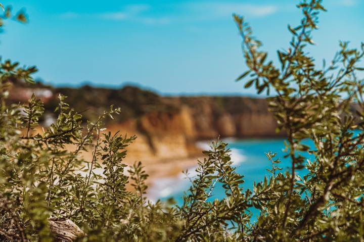 7 Awesome Things To Do In Lagos, Portugal