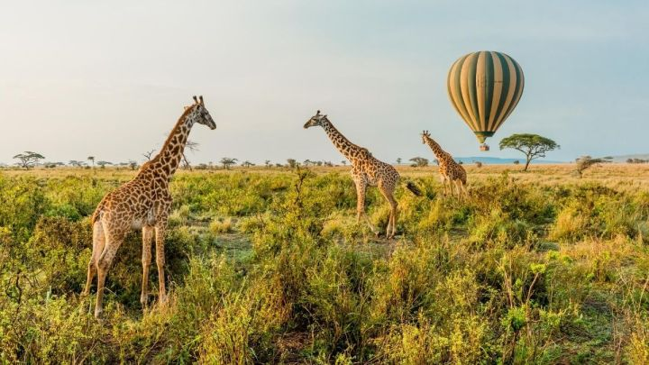 What Are The Safest Places To Visit In Africa In 2020?